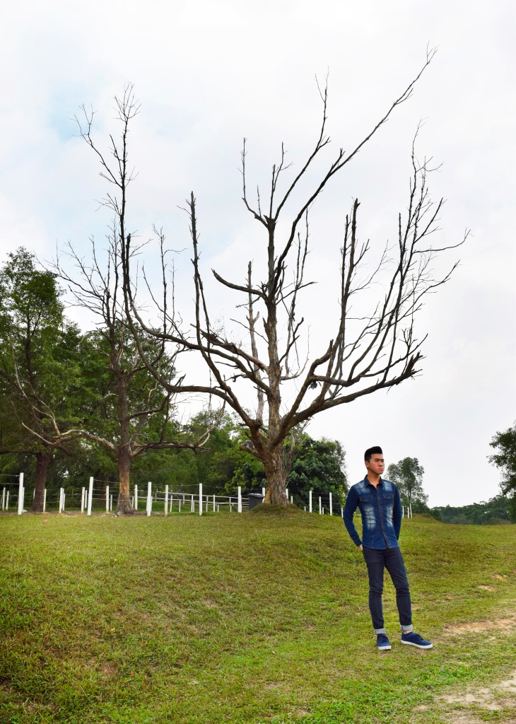 This is another one of Riders' iconic photo-op spots. A really old tree at the top of the nearby hill. Many have taken photos around, at, on or beside the tree.  Including I.